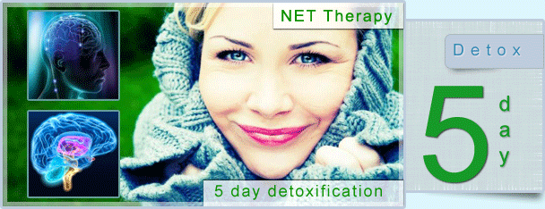 Net therapy drug detox facility